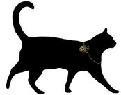 Rue de la Marguerite cat with watch necklace